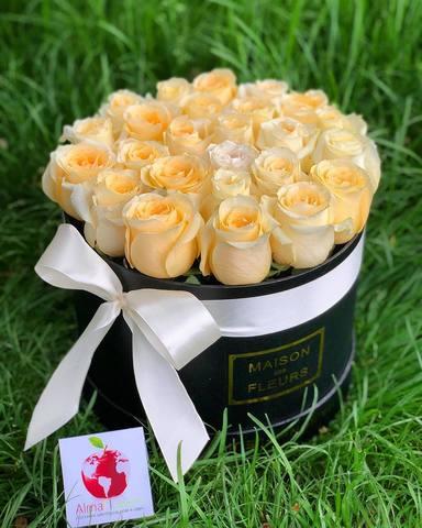 Элитные кремовые розы в черной подарочной коробке