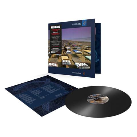 Pink Floyd / A Momentary Lapse Of Reason (LP)