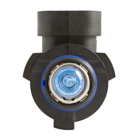 Галогенные лампы MTF Light PALLADIUM HB3 (9005) 65W