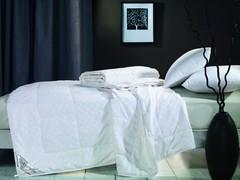 Одеяло шелковое 200x220 Asabella CS-3