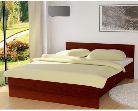 Кровать ДАНИ 1200*1900