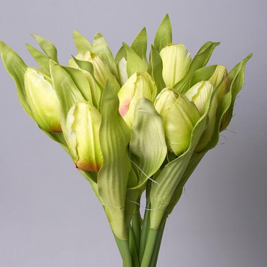 Купить цветы, букет из зеленых тюльпанов
