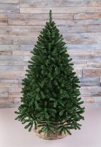 Напольные елки 155 см