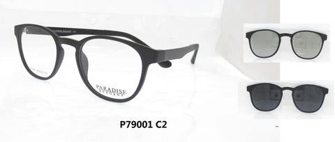 P79001 C2