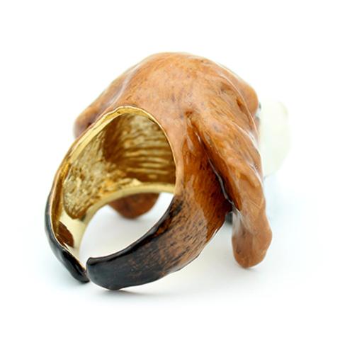Кольцо Бигль