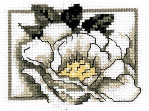 6-089 Белый шиповник