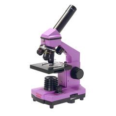 Микроскоп школьный Микромед Эврика 40х-400х в кейсе (аметист)
