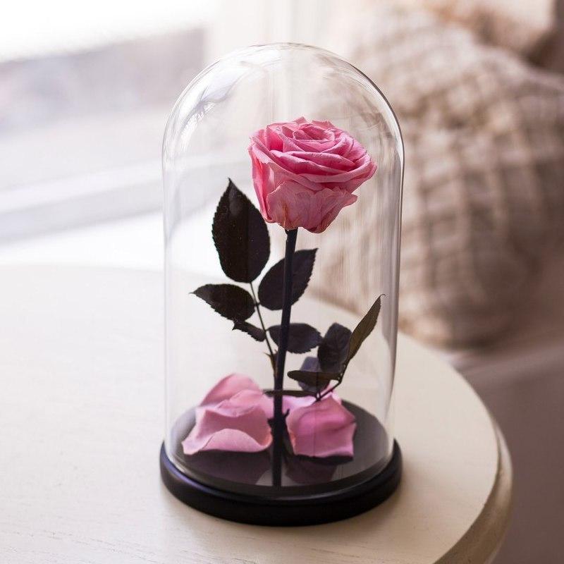 Розовый вариант цвета