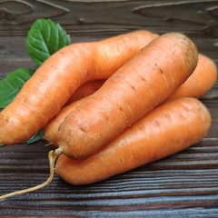 Морковь домашняя без ботвы (кг, 7-9 штук).