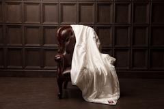 Элитное одеяло шелковое всесезонное 200х220 German Grass Fly Silk