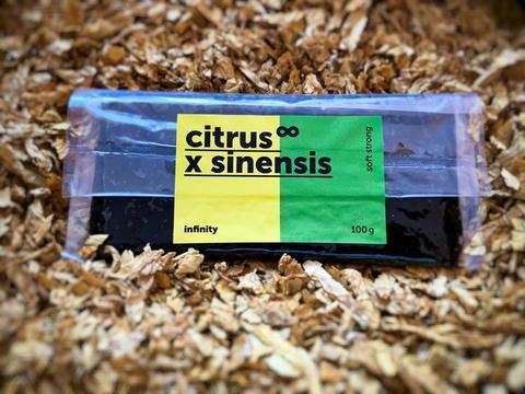 Табак Infinity 100 г Citrus x sinensis