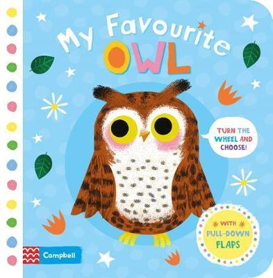 Kitab My Favourite Owl   Campbell Books