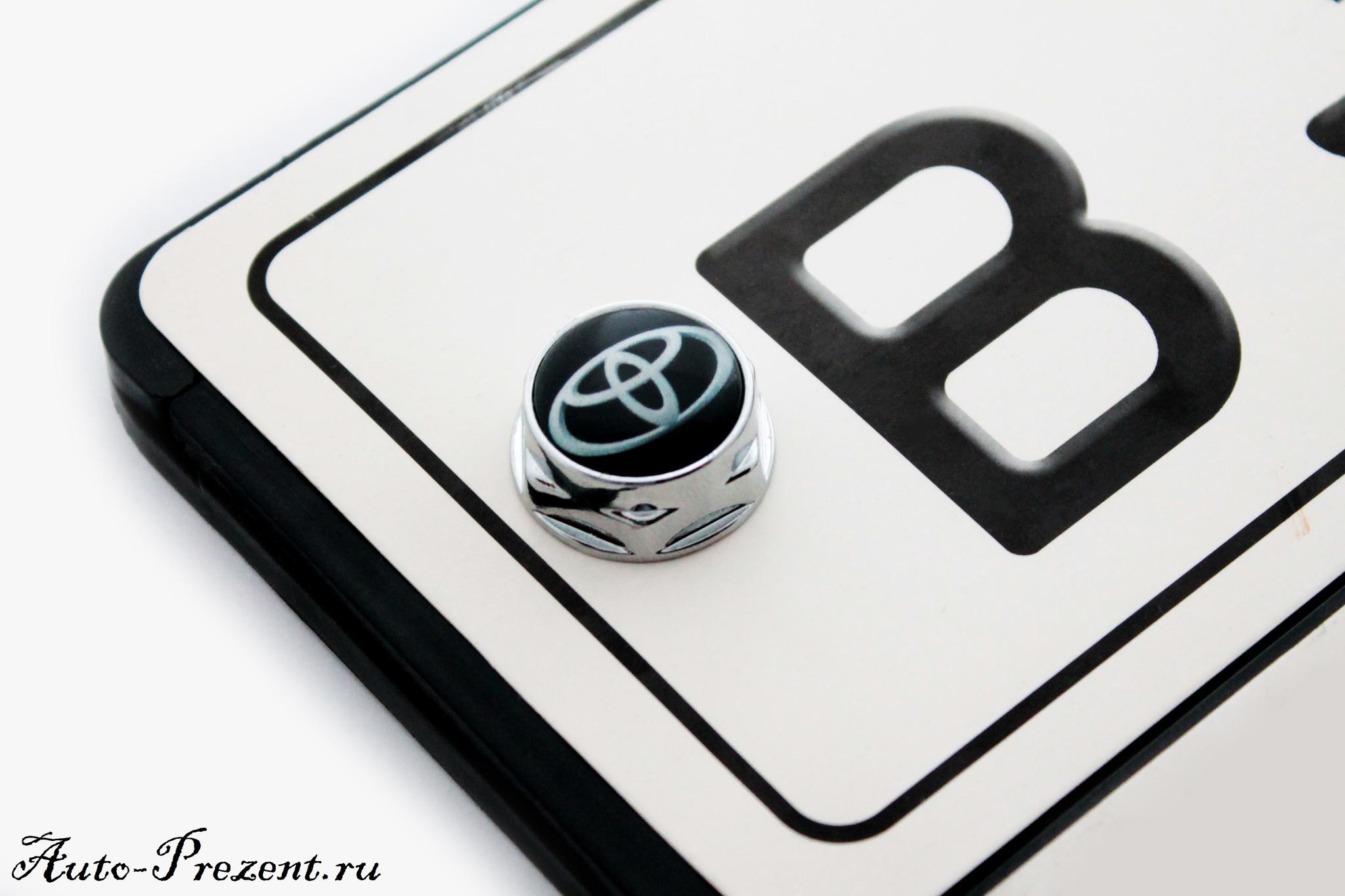Болты для крепления госномера с логотипом TOYOTA