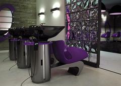 Парикмахерское кресло Panda Ronda