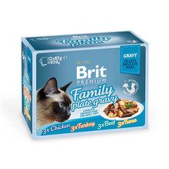 Brit Premium 82% мяса Набор паучей для кошек Family Plate Gravy Семейная тарелка (кусочки в соусе) 12x85 г