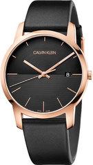 Мужские швейцарские часы Calvin Klein K2G2G6CZ
