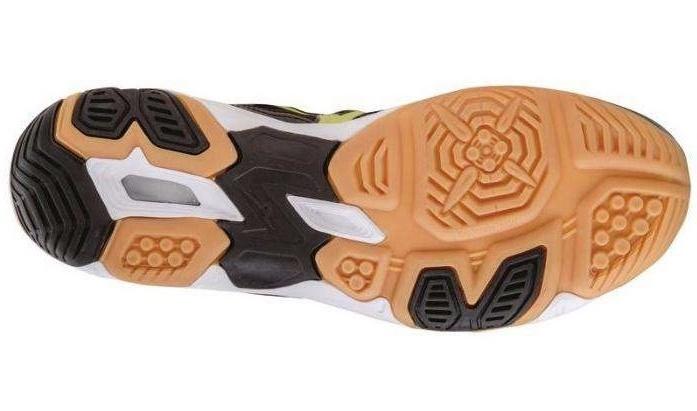 Мужские волейбольные кроссовки Mizuno Wave Twister 4 (V1GA1570 14) белые фото