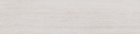 Вяз белый 9,9х40,2
