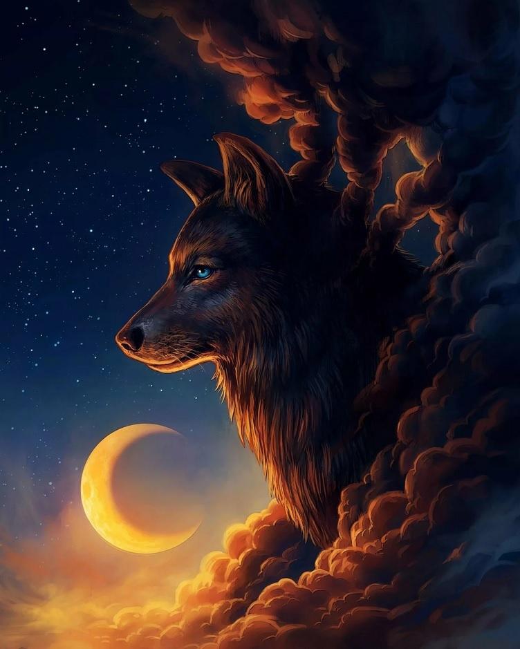 Картина раскраска по номерам 40x50 Волк и месяц (арт ...