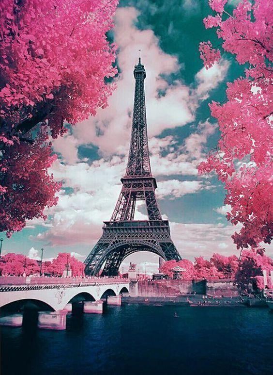 Картина раскраска по номерам 40x50 Вид на Эйфелеву башню ...