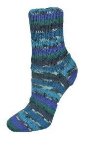 Rellana Flotte Socke Magic 1302 купить