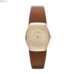 Наручные часы Skagen SKW2258