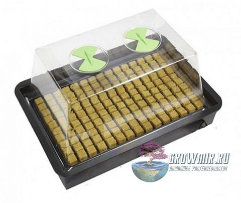 Пропагатор Nutriculture X-Stream Small 61х41х27 см