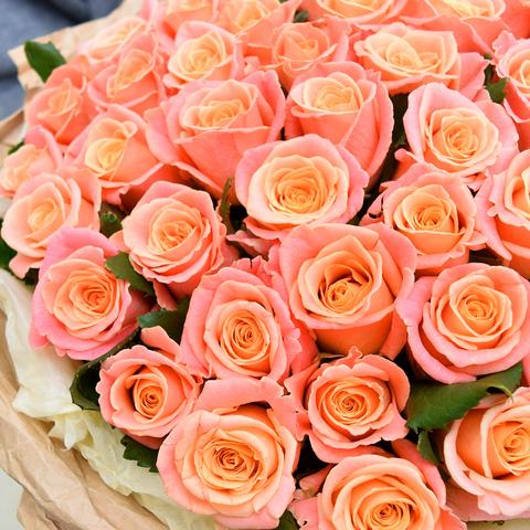 Розы персиковые  Miss Piggy от 9шт