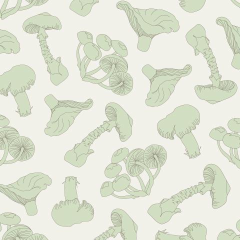 Зеленые грибы