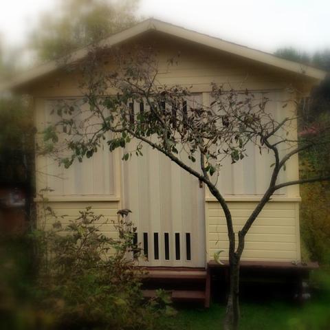 Двери гармошка в беседке, цвет белый дуб