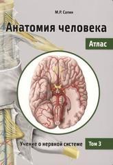 Анатомия человека. Атлас. В 3 томах. Том 3. Учение о нервной системе