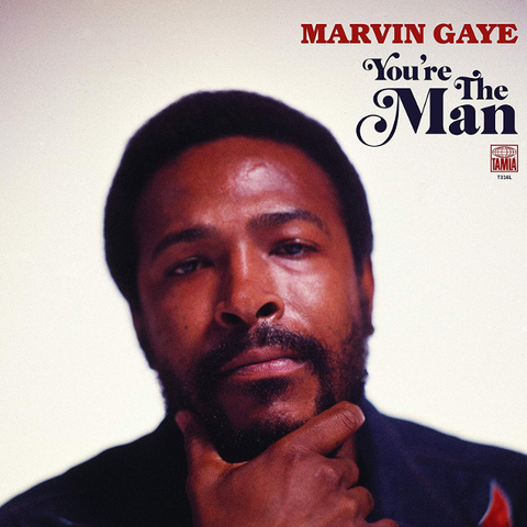 Marvin Gaye / You're The Man (2LP)