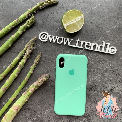 Чехол iPhone X/XS Silicone Case /spearmint/ яркая мята original quality