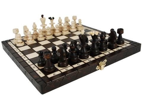 Шахматы 134А
