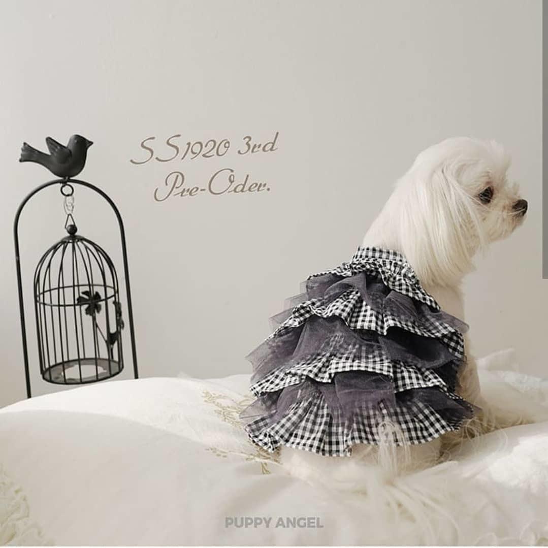 купить летние платья для собак