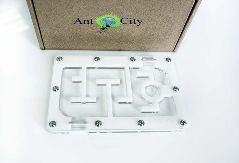 Модуль AntCity