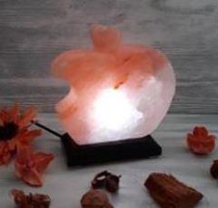Солевой светильник Яблоко 0,6 кг USB