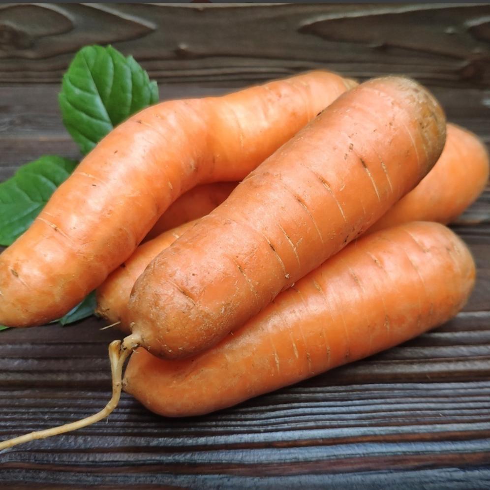 Фотография Морковь свежая без ботвы (Краснодар) / 1 кг купить в магазине Афлора