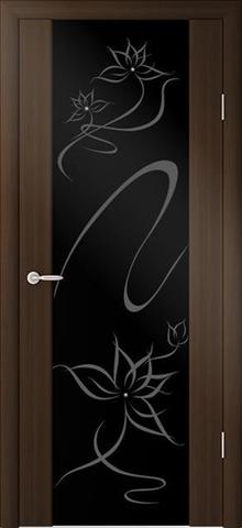 Дверь Фрегат ALBERO Сан-Ремо-1 Симфония, триплекс чёрный, цвет кипарис тёмный, остекленная