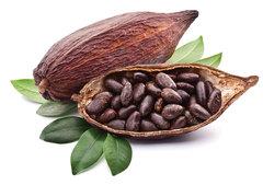 Гидролат Какао