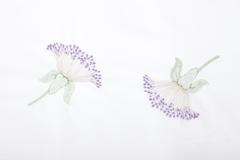 Наволочка 70х70 Bovi Gardenia белая