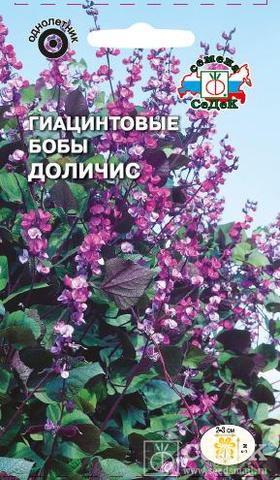 Семена Гиацинтовые Бобы Доличис