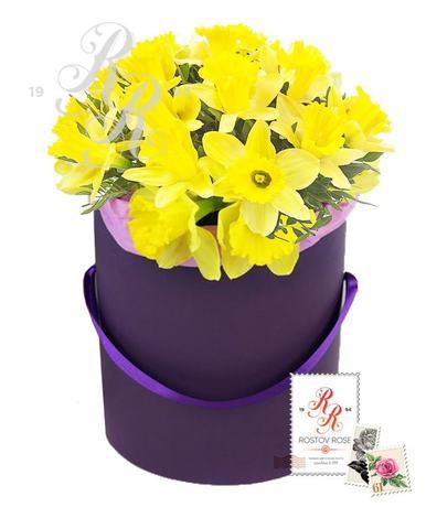 Нарцисс желтый в коробке