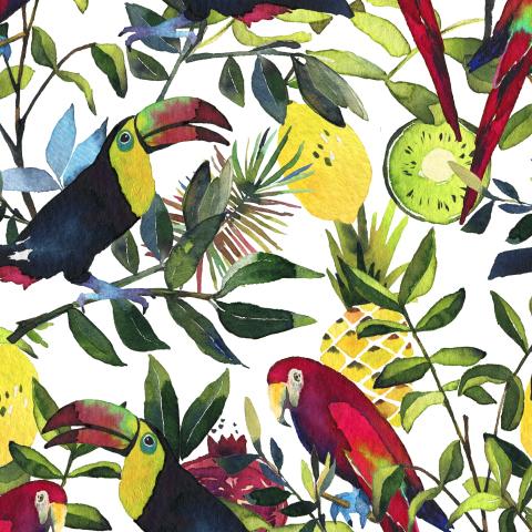 Экзотические птицы и фрукты