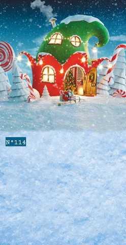 Фотофон № 114 Снег и домик