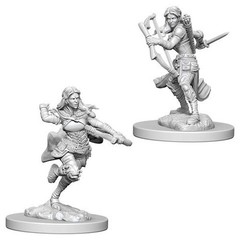 Nolzur's Marvelous Miniatures - Air Genasi Female Rogue