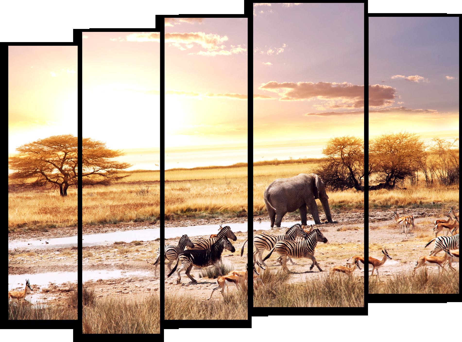 """Природа Модульная картина """"Животные Африки"""" М785.png"""