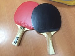 Теннисный стол всепогодный № 3
