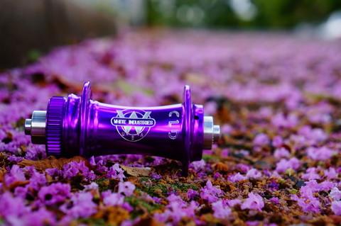 Фиолетовый / Purple