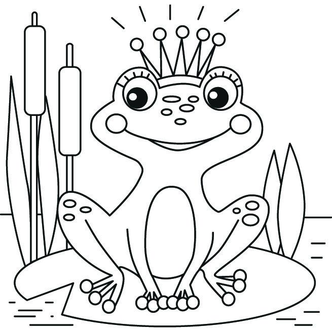 картинки для раскраски царевна лягушка нередко